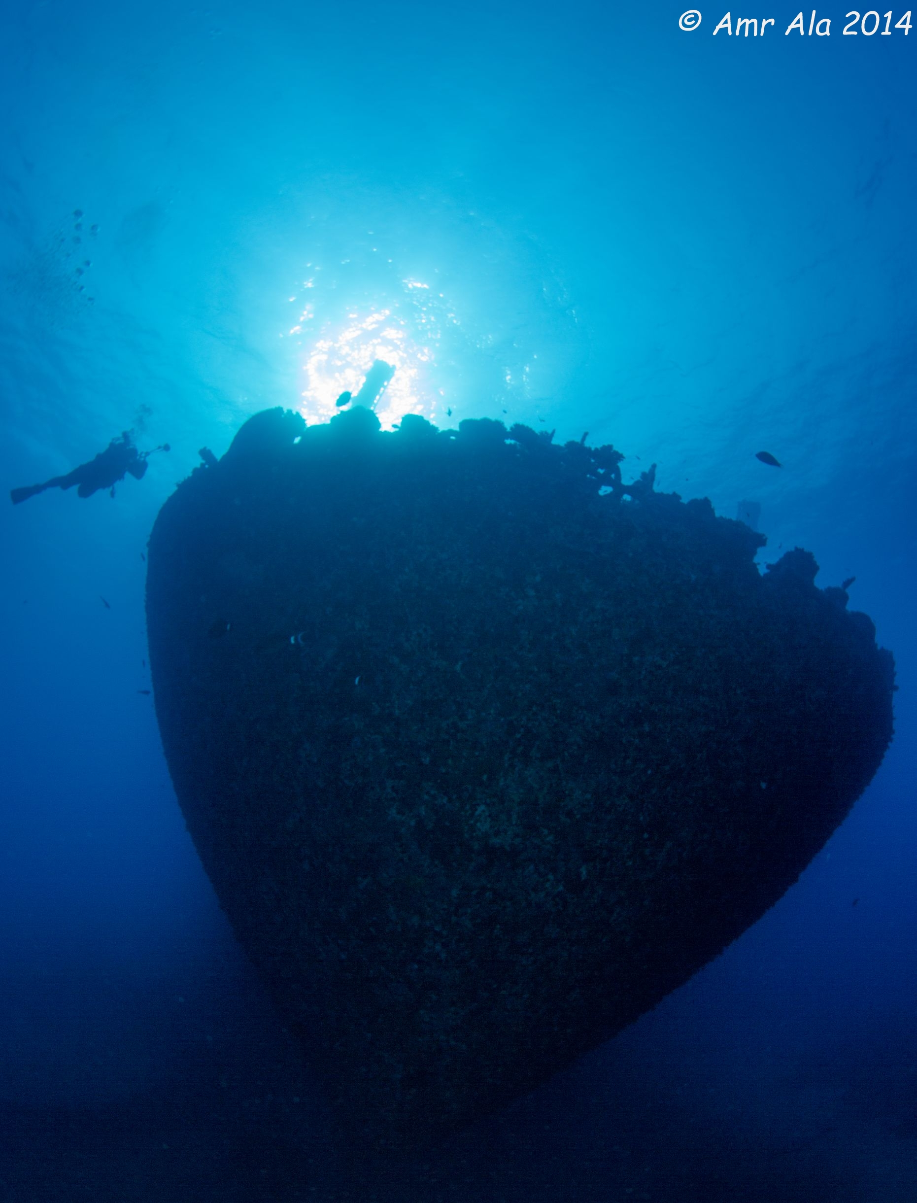 a cargo Wreck, max depth 95 ft