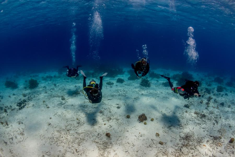 A few PADI Dive Pros Hanging out in Bonaire