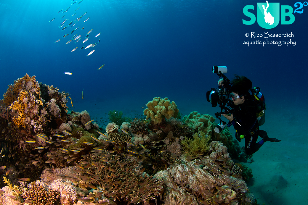 The best buddy to an underwater photographer is the one who shares the passion!