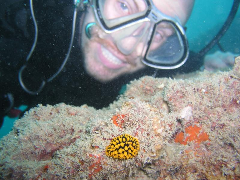 Brian and nudibranch - Dive 287