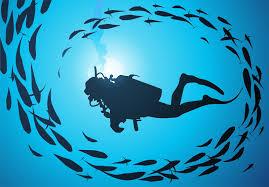 scuba diving malaga, dive trips Marina del este