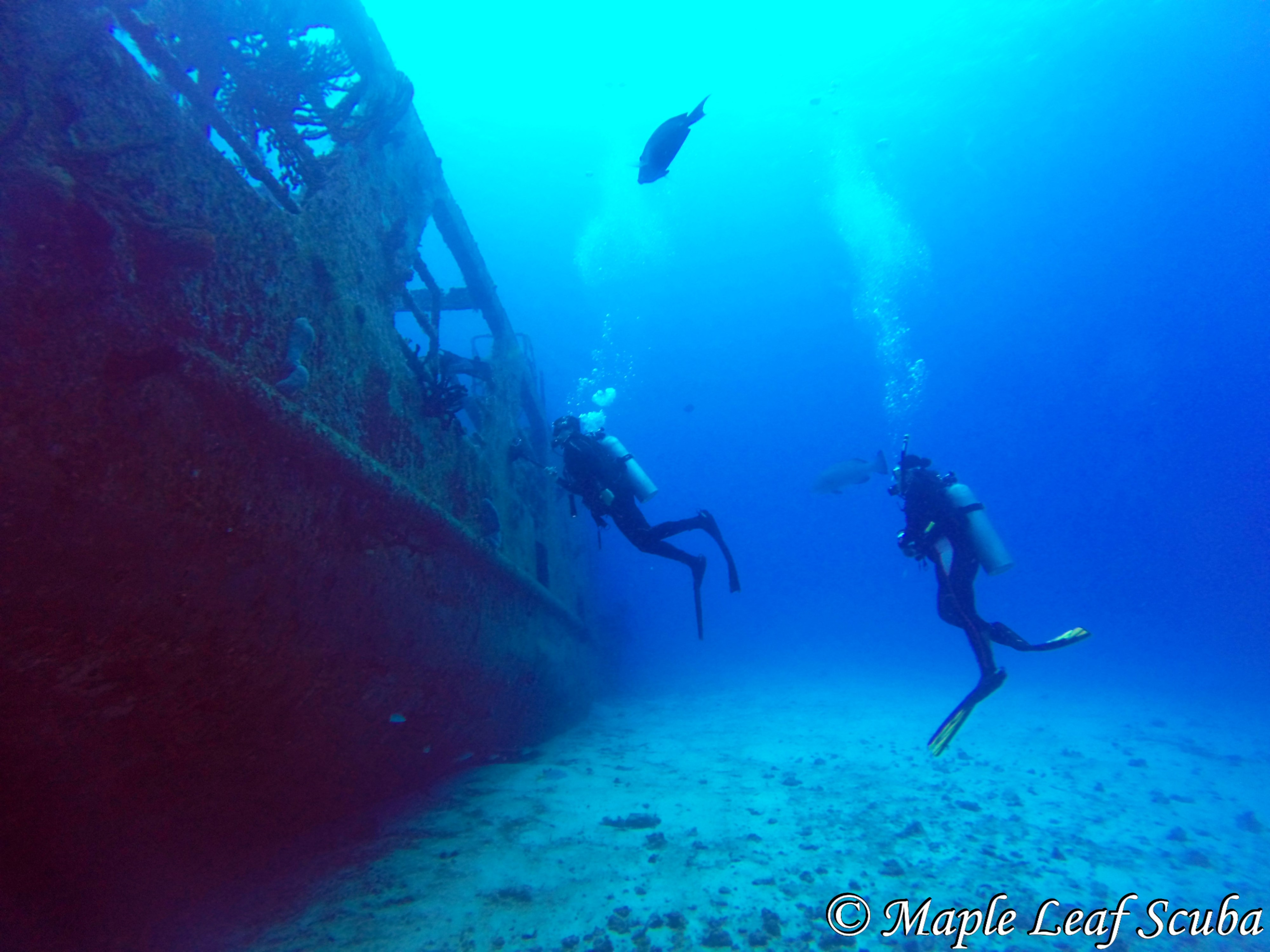 Diving the C53 Felipe Xicotencatl Ship Wreck in Cozumel