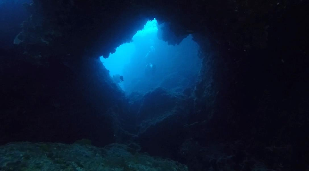 Changgo swim through