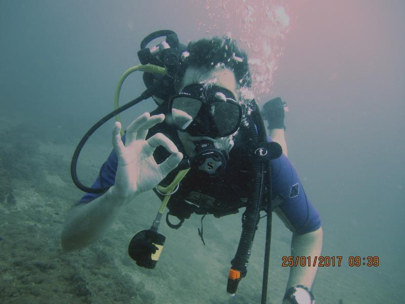 Diver 2