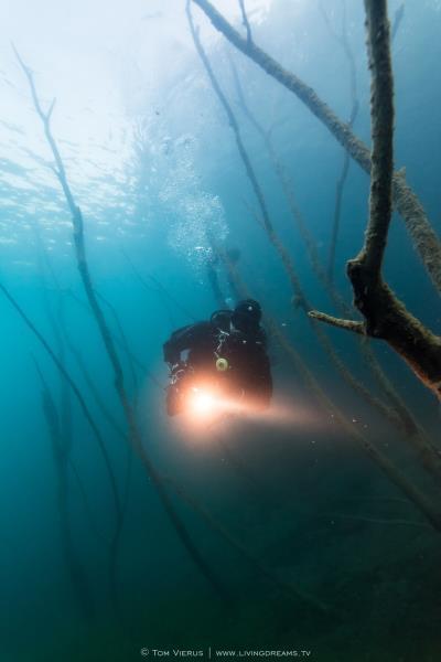 Diver in Hemmoor Lake