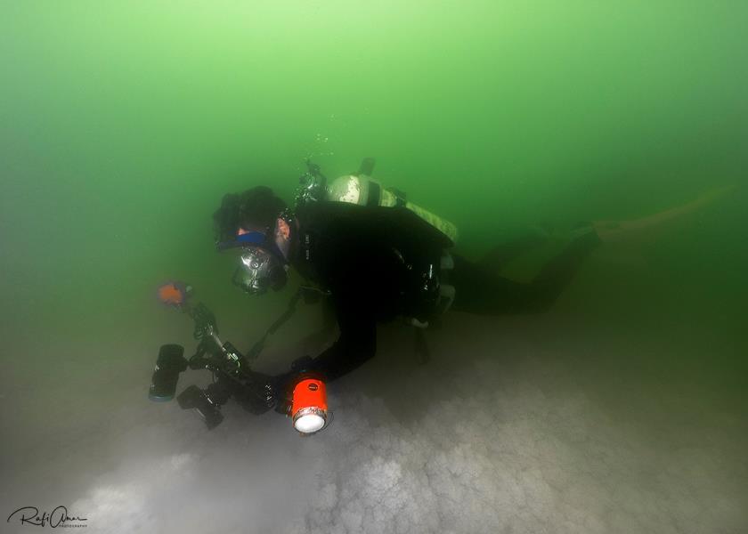 Diver in the Dead Sea