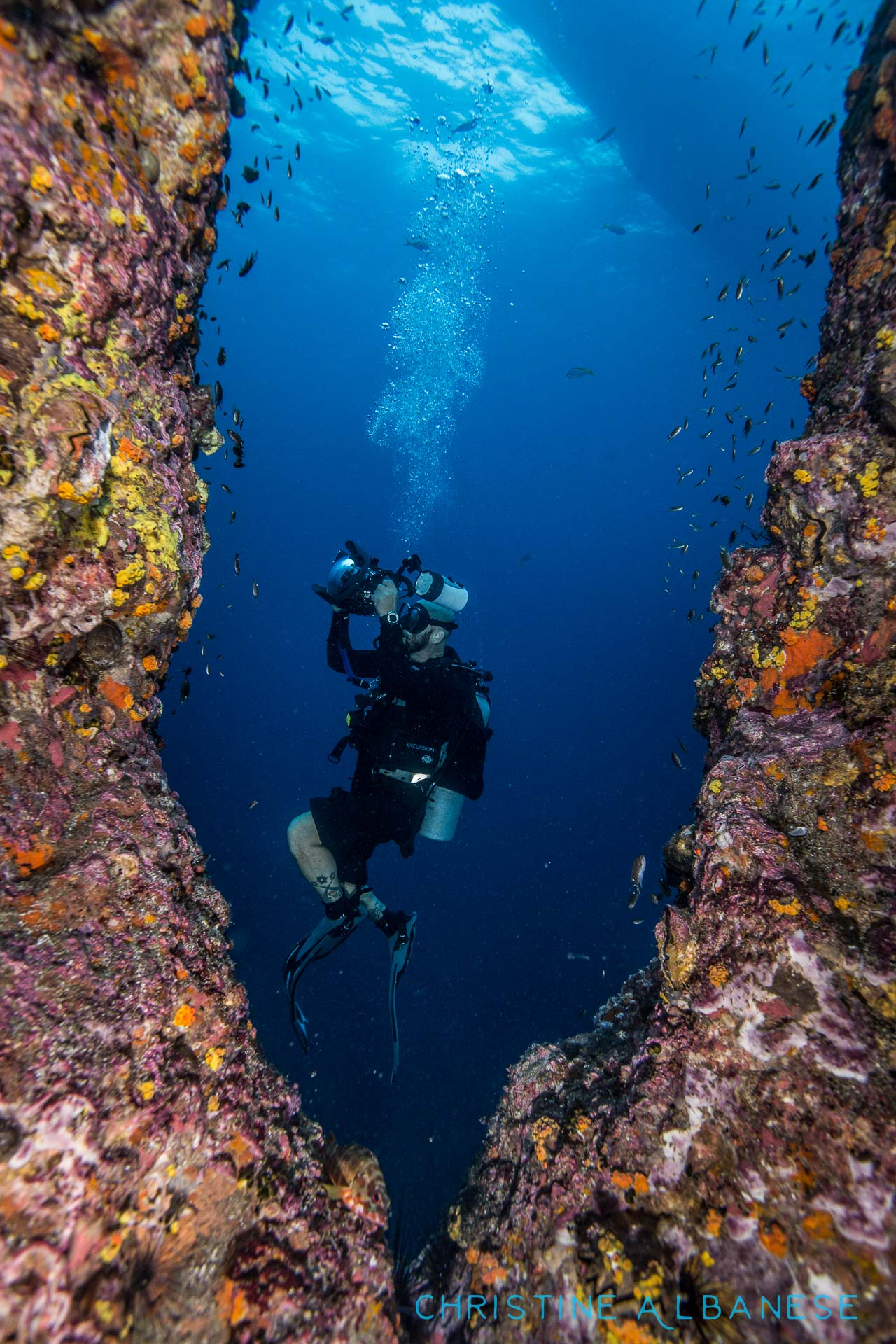 I had loads of fun teaching Jess and John what I know about underwater photography! Here's a photo I took of John while I was inside the chimney at Sailrock. Great students, miss you guys! 😊 @jesathey   #creativeframing #naturalframe #underwater #underwaterdiving #underwaterphotography #uwphotography #photocourse #ocean #sailrock #thailand #kohtao #adventure #ikelite #ds160 #canonshooters #canon6d #canon1740 #wideangle #scuba #scubadiving #divinglife #padi