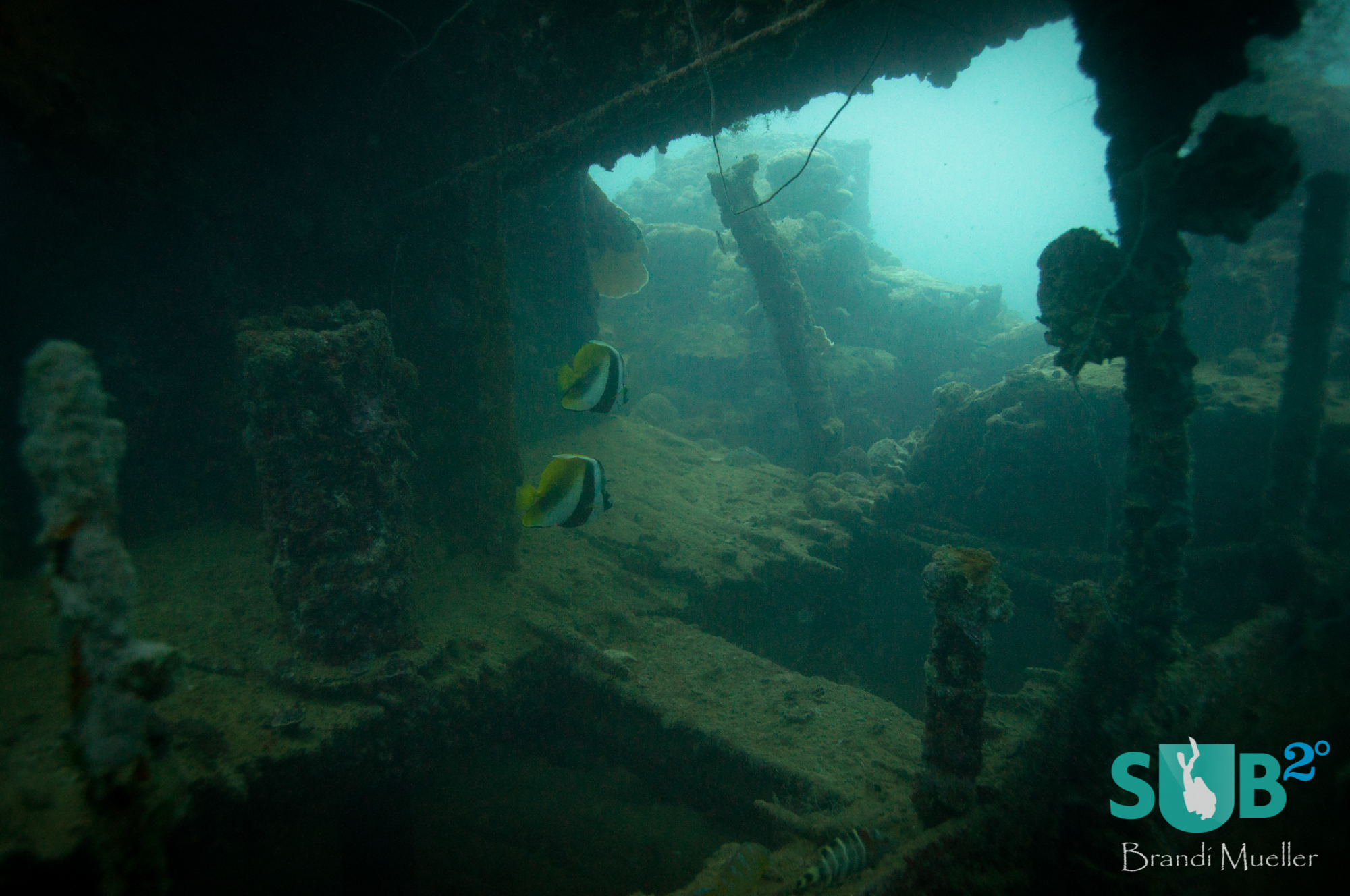 A view inside the Helmet Wreck, an unidentified Japanese ship sank just outside Malakal Harbor