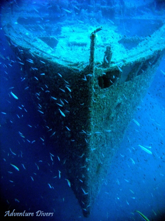 BOW OF THE NARAJITO WRECK OFF CABO DE PALOS