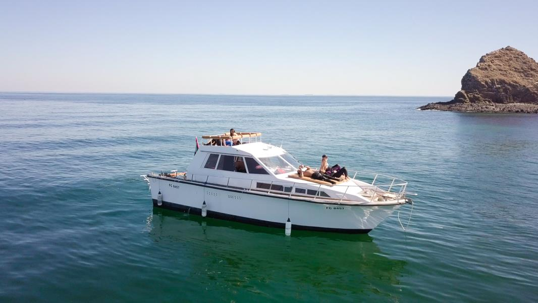 nemo diving boat in fujairah (8)