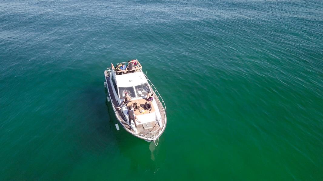 nemo diving boat in fujairah (9)
