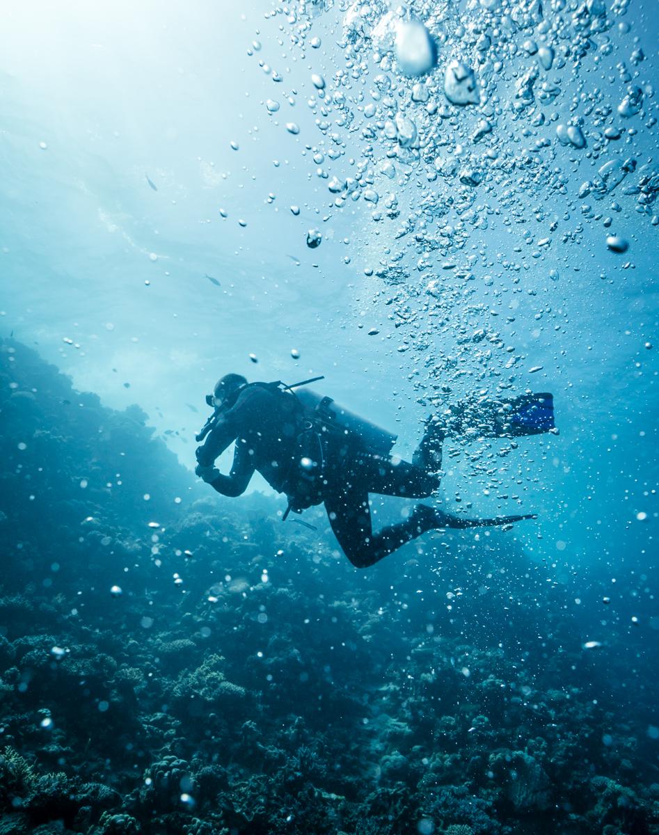 Just me & the ocean
