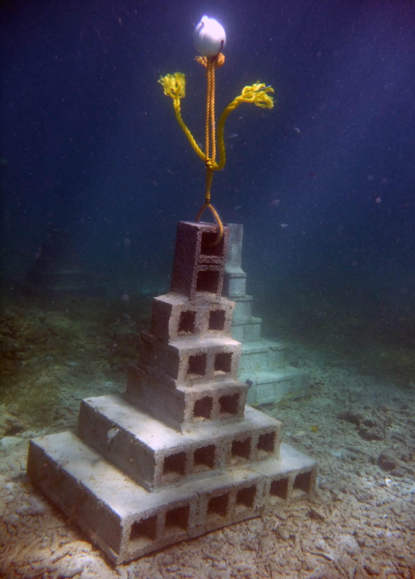 The pyramid design was used because it creates a stable platform in shallow water. Fish, corals, sponges and other types of marine life are expected to quickly propagate the artificial reef.