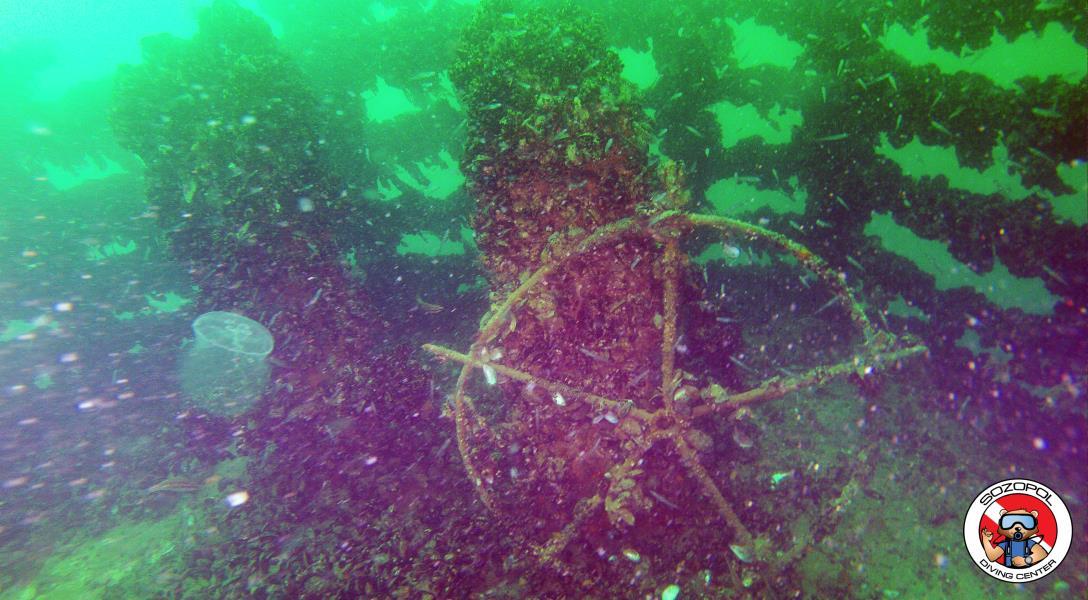 Shipwreck Pioner