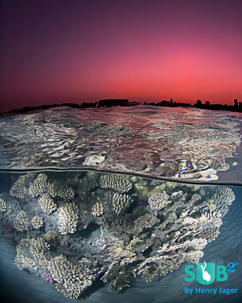 Sunset at the Red Sea Reef