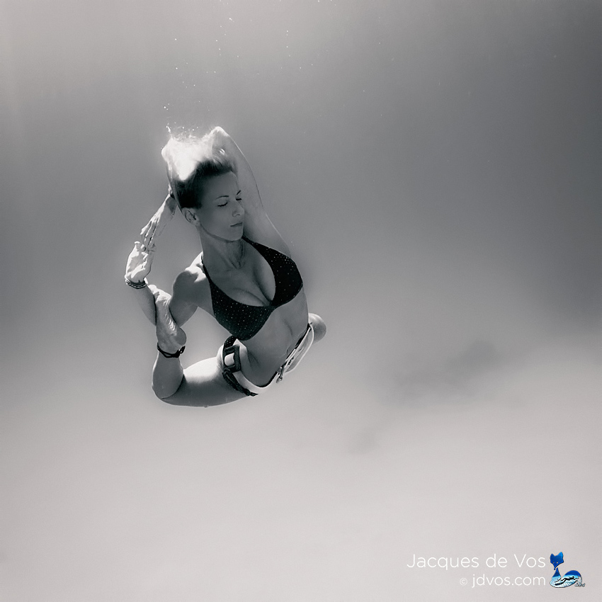 Suspended in #light ... For many people, being #underwater is a sure way to temporarily put on hold the turmoil above the #surface and find #peace in their busy lives. Where do you find peace? Prints here ▶#jdvos.com shot with @ikelite housing 🐙