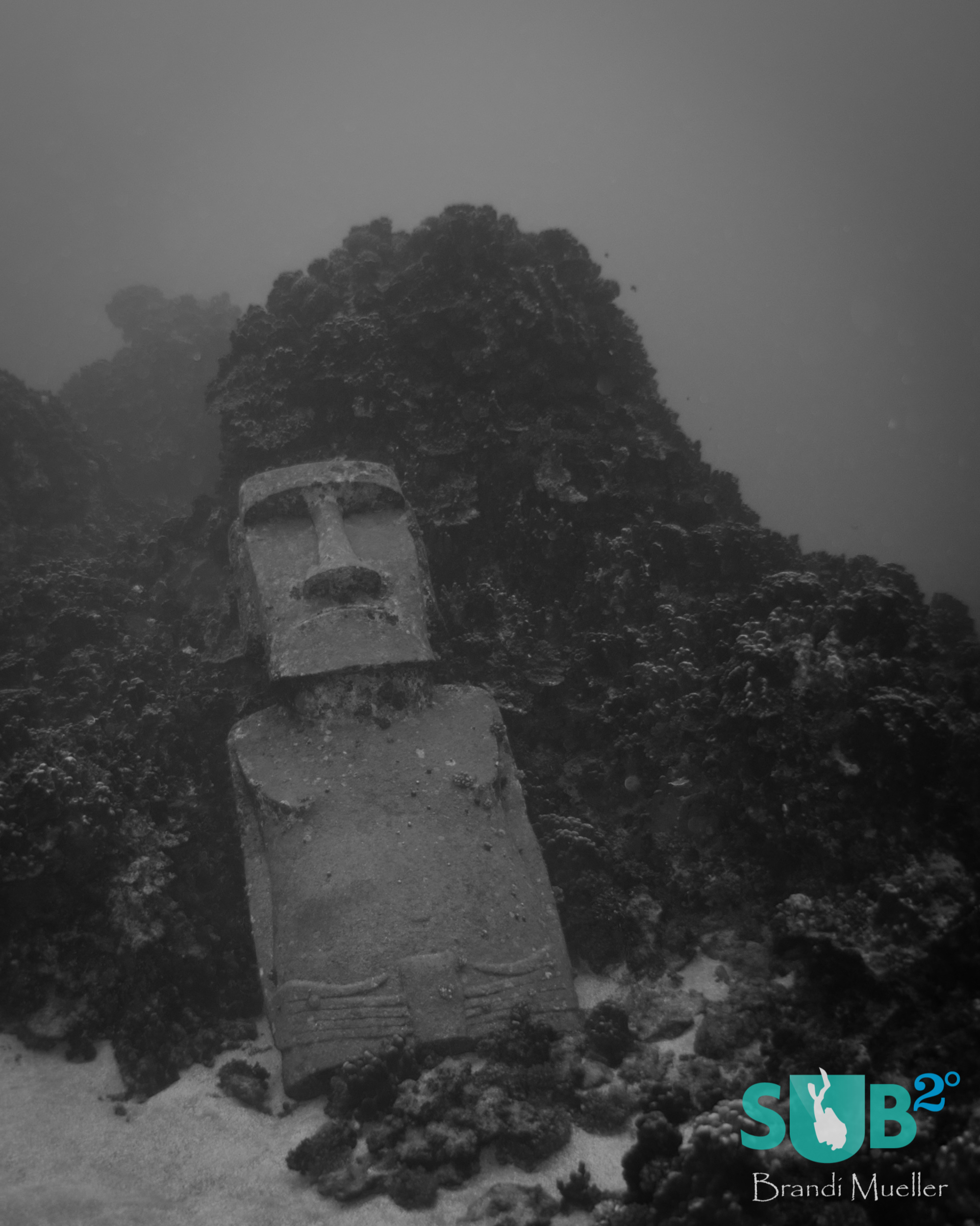 Easter Island is home to the mysterious moai - human-like carved statues.  Divers can visit one underwater.