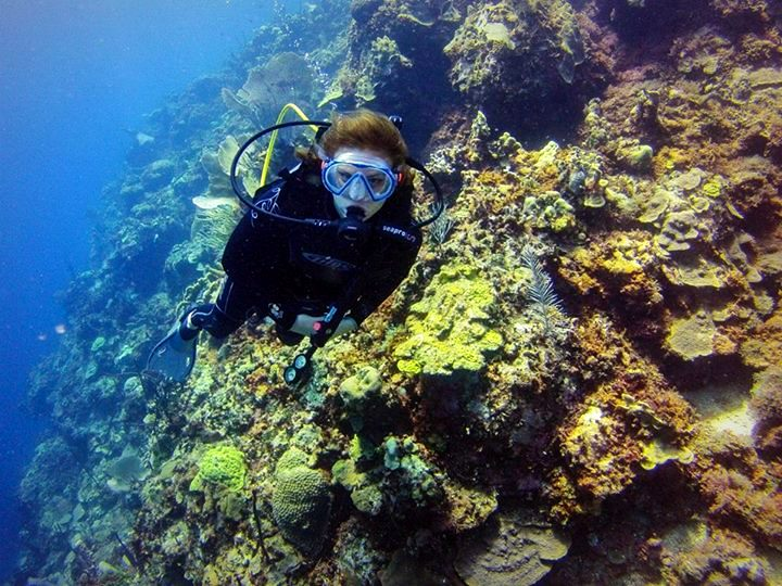 Wall Diving at Catalina Island, Dominican Republic