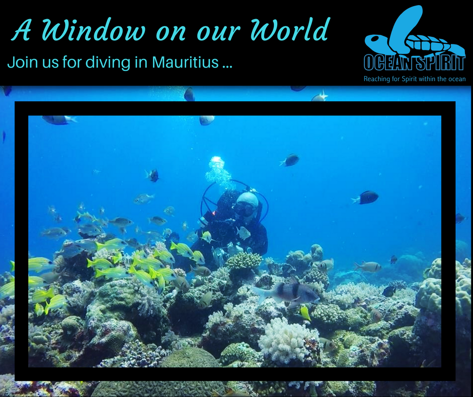 Diving with Ocean Spirit in Mauritius