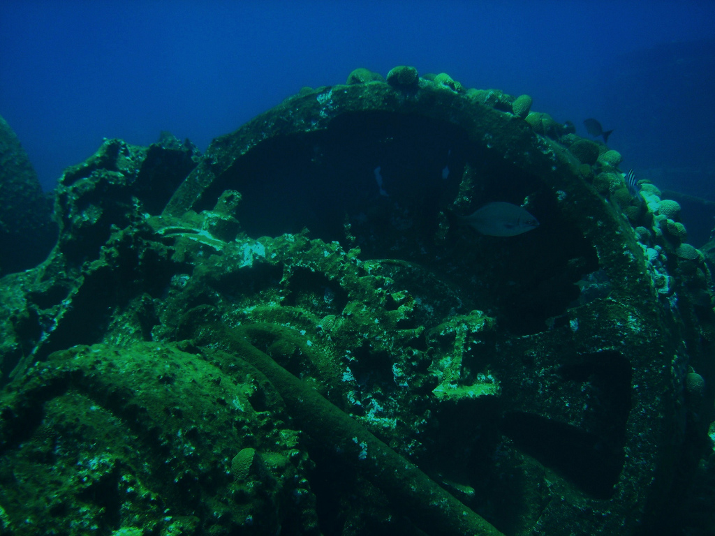 Wreck dive in Bermuda. Photo by: Cait_Stewart Link: https://flic.kr/p/5kEK9D