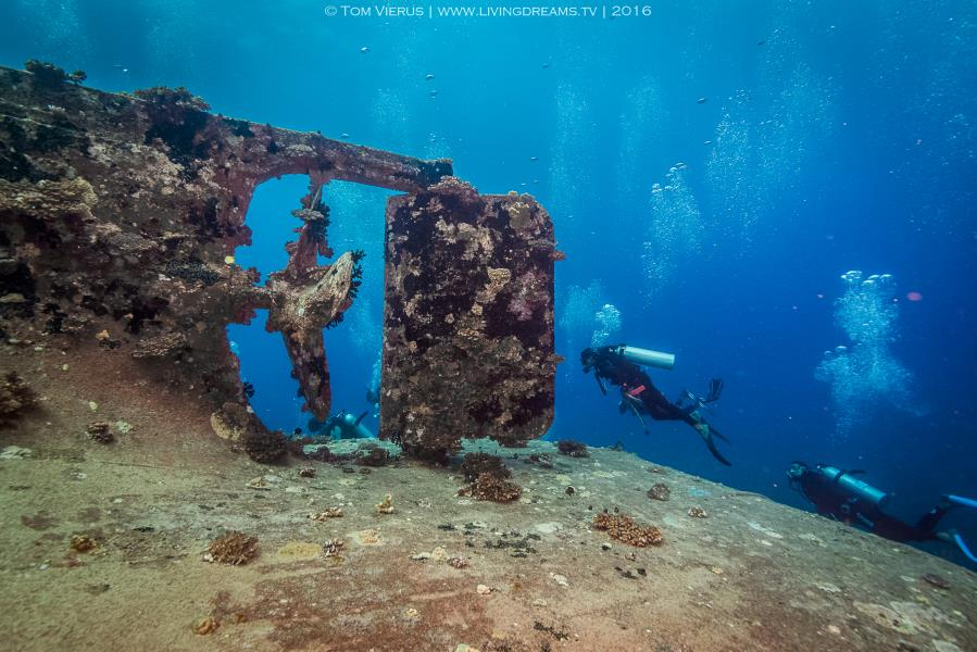 Wreck in the beqa lagoon