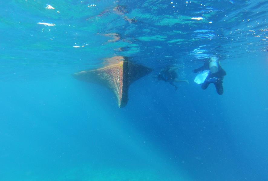 www.cruise-maldives.com boat