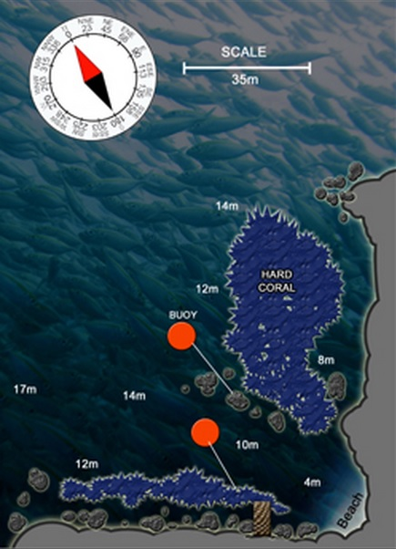 Site Map of Mango Bay - Koh Tao Dive Site, Thailand