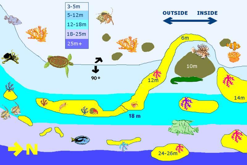 Site Map of Rangali Faru  Dive Site, Maldives