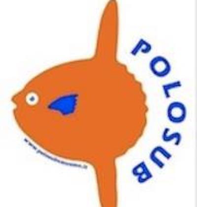 Polo Sub Sanremo Arma