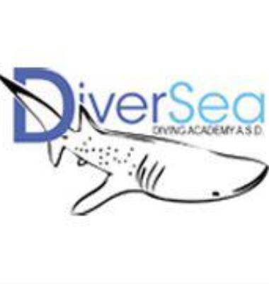 Diver Sea - Diving Academy