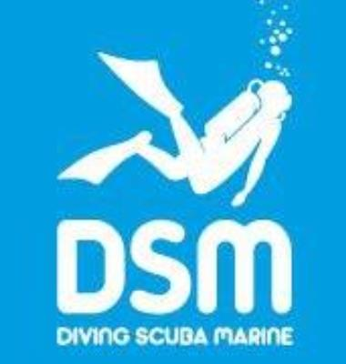 DSM - H2O PLONGEE