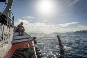 Sea Star dive platform