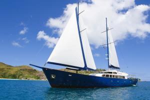 Sea Bird on sail
