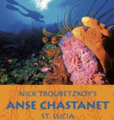 Anse Chastanet Scuba St Lucia