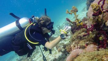 PADI Underwater Digital Photography Courses