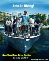 Dive key largo with Sea Dwellers Dive Center