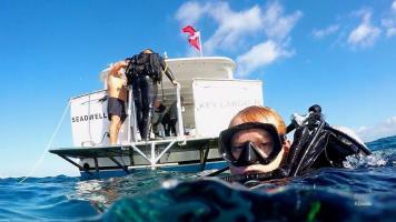 Dive charters to Key Largo & the Florida Keys