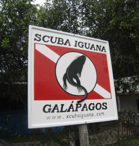 Scuba Iguana