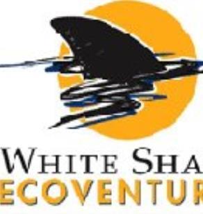White Shark Ecoventures