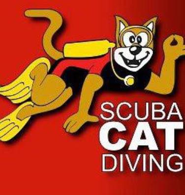 Scuba Cat Diving