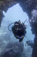 Diving Sailrock from Koh Samui