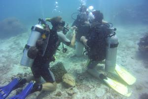Discover Scuba Diving Koh Samui