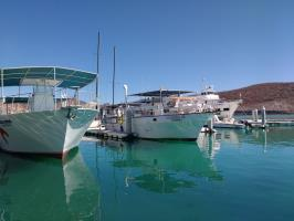 Cantamar Diving Boats fleet