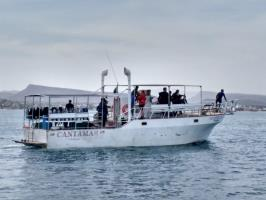 Siempre Si diving boat