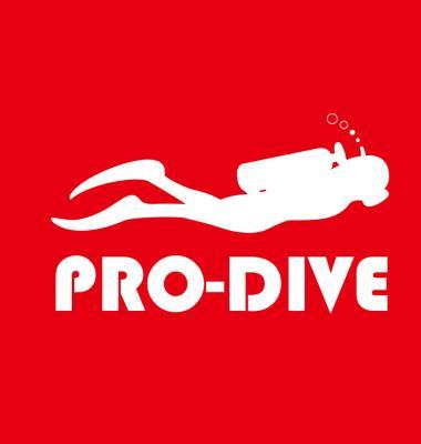 Pro-diver Development Ltd