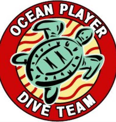 Ocean Player Dive