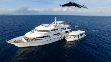 Carpe Diem Liveaboard Maldives