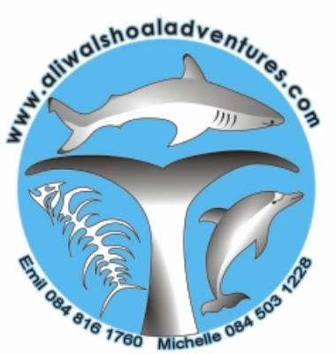 Aliwal Dive Centre