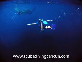 Scuba Diving Cancun