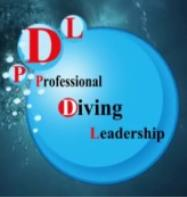 Professional Diving Leadership
